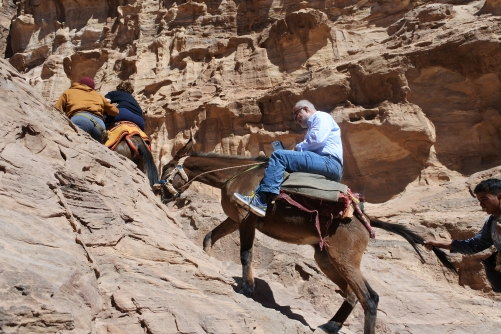 Mule rides up to Monastery